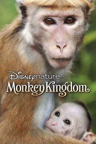 Monkey Kingdom Soundtrack