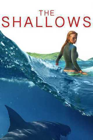 The Shallows Soundtrack
