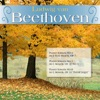 Ludwig Van Beethoven - Piano Sonata No. 8 in C minor, Op. 13, 'Sonata Pathetique,' No. 2: Adagio cantabile